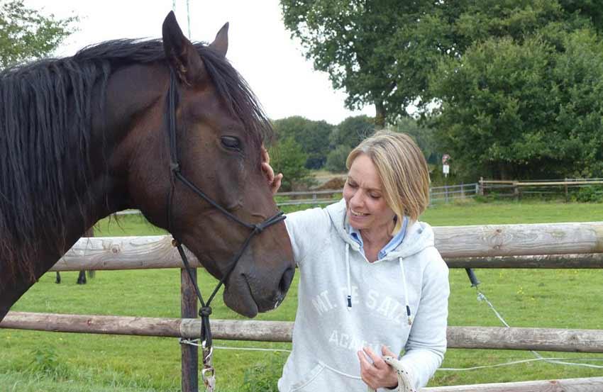 Verhaltenstraining Pferd Dr. Silke Volkmann Hamburg