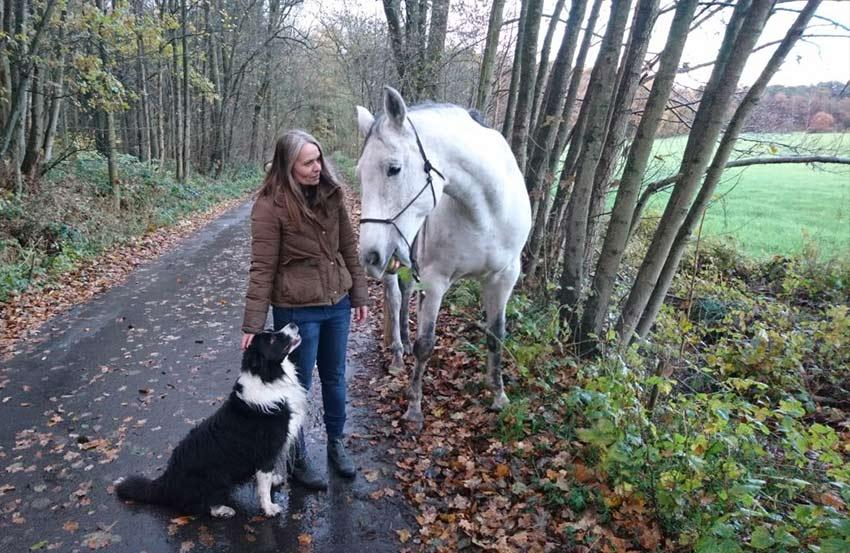 Coaching Spaziergang Pferd Hund 2